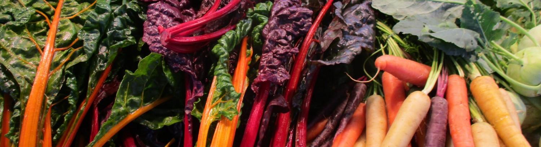 Gemüse nach Farben aufräumen!