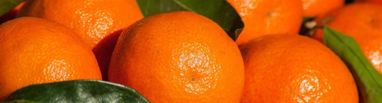 Mit Ihren Lieblings-Clementinen durch den Jahreswechsel